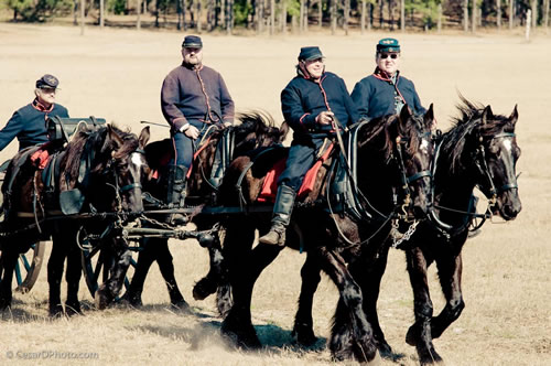 Horses moving Canons