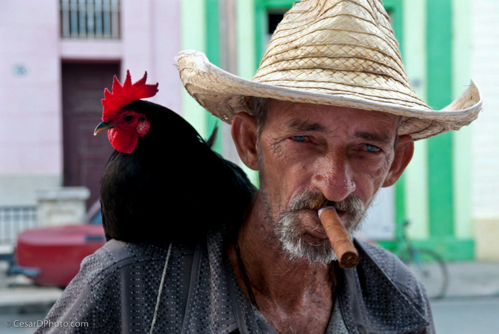 Hombre Y el Gallo, Close Up