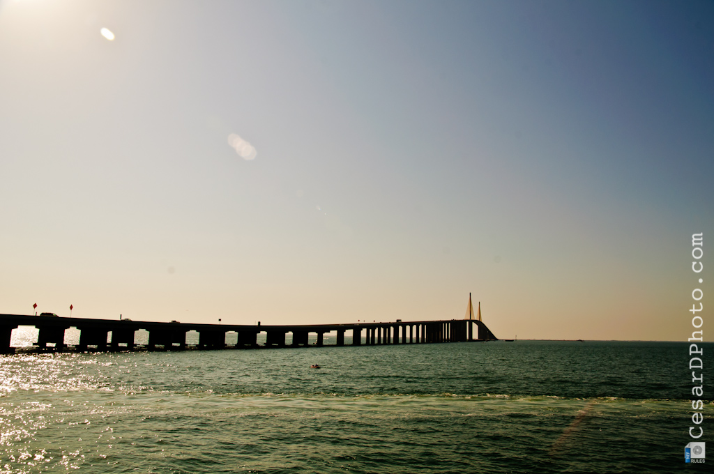 Welcoming spring at skyway bridge fishing pier for Skyway bridge fishing